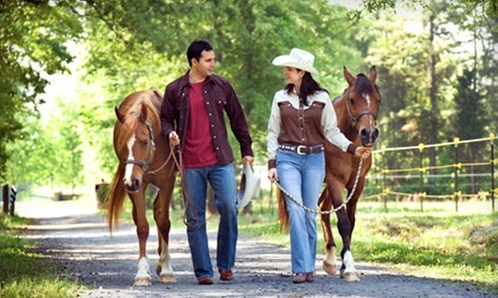 Pine River Stables - St. Clair: $18 for One-Hour Horseback Ride for Two at Pine River Stables in St. Clair