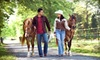 Up to Half Off Pine River Horse Ride in St. Clair
