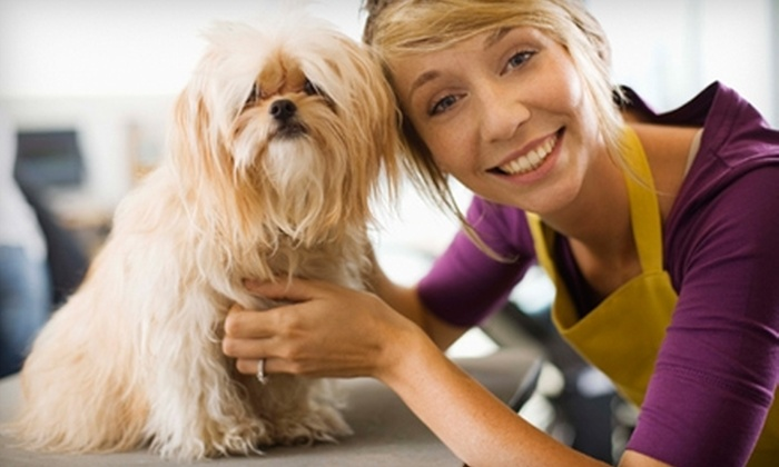 Bentley's Dog Wash & Fine Grooming Spa - Plano: $10 for 20 Tokens for Do-It-Yourself Dog Wash at Bentley's Dog Wash & Fine Grooming Spa in Plano ($20 Value)
