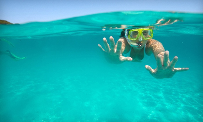 Dixie Divers - Deerfield Beach: Snorkel Trip, Scuba Certification, or Advanced Scuba Certification from Dixie Divers in Deerfield Beach (Up to 54% Off)