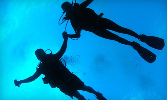Sea Stallion Scuba Outfitters - Lake Forest: $199 for Diving-Certification Course at Sea Stallion Scuba Outfitters in Lake Forest ($495 Value)
