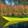 56% Off Full-Day Kayak or Paddleboard Rental