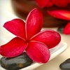 Up to 64% Off Spa Services in Walnut Creek