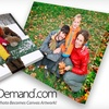 """Canvas On Demand - Chicago: $45 for One 16""""x20"""" Gallery-Wrapped Canvas Including Shipping and Handling from Canvas on Demand ($126.95 Value)"""