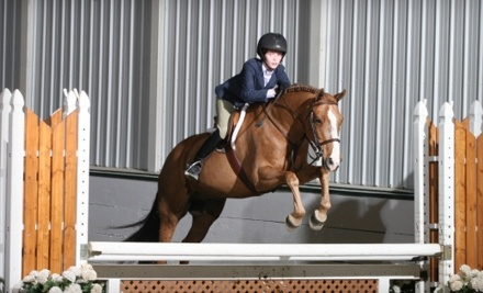 Somerset Sporthorse - Somerset Sporthorse Inc. in Lake in the Hills
