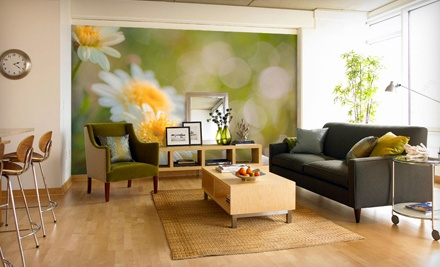 $150 Groupon to Murals Your Way - Murals Your Way in
