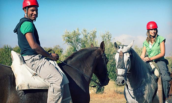 Nova Quarter Horses - Mokena: $69 for a Package of Five Group Horseback-Riding Lessons at Nova Quarter Horses (Up to $165 Value)