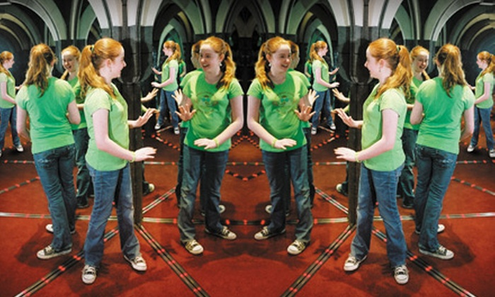 Ultimate Mirror Maze Challenge and The Vault Laser Beam Challenge  - Downtown: Admission for One or Two to the Ultimate Mirror Maze Challenge and The Vault Laser Beam Challenge (Up to 57% Off)