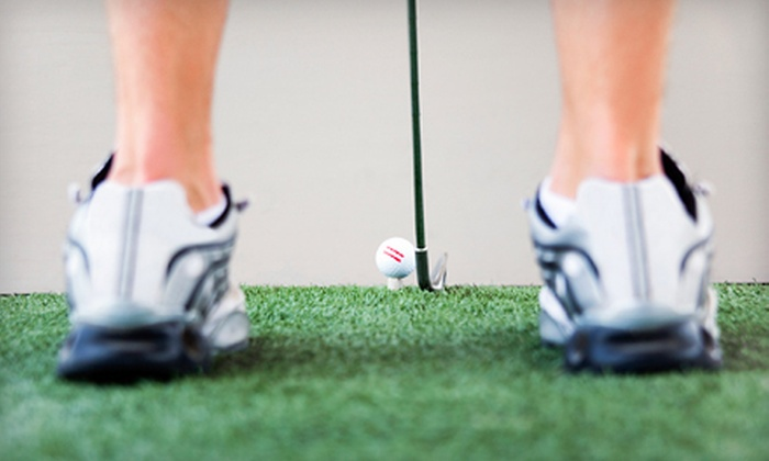Golf Etc. - Reckeweg Road: 18 Holes in a Golf Simulator or a Lifetime Custom Club Fitting at Golf Etc. (Up to 54%)