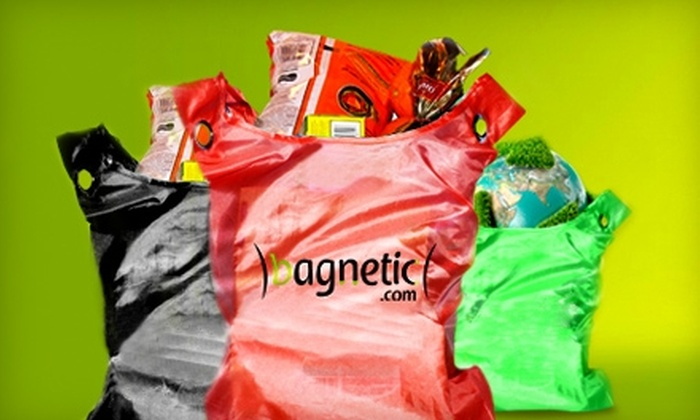 Bagnetic: $7 for $14 Worth of Reusable Bags and Accessories from Bagnetic