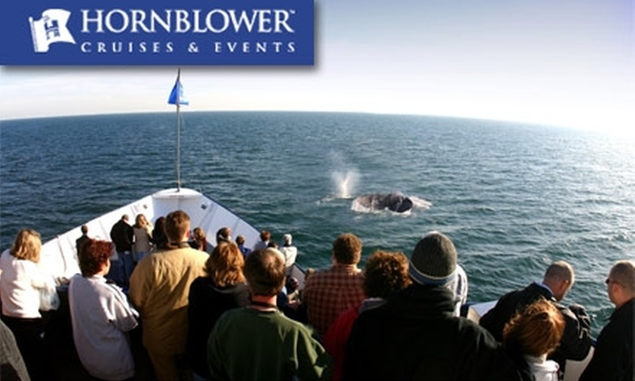 Hornblower San Diego - Marina: $18 for a Whale & Dolphin Watching Cruise with Hornblower Cruises & Events