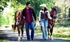 53% Off Western Horse-Riding Lesson in Plymouth