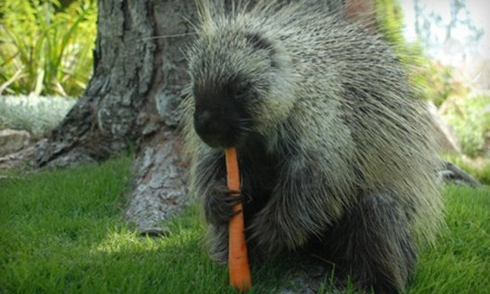 Wildlife Learning Center - Los Angeles: $6 for Two General Admission Tickets to Wildlife Learning Center