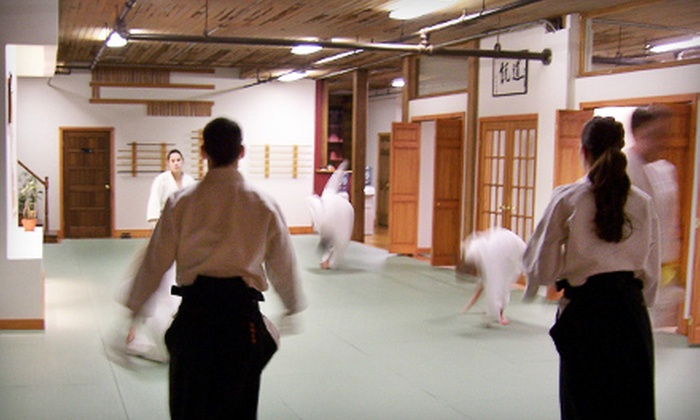 Zenshinkan Dojo - Green Island: Six-Week Intro to Aikido Course for Adults or One-Month Youth Aikido Membership Package at Zenshinkan Dojo