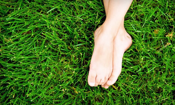 Duplessis Works - Baton Rouge: $99 for a Lawn-Care Package from Duplessis Works ($250 Value)