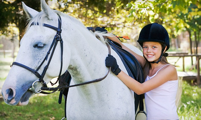 SGA South, Inc. - Mooresville: One or Four One-Hour Horseback-Riding Lessons at SGA South, Inc. in Concord (Up to 72% Off)
