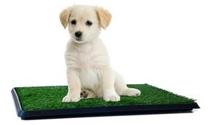 Puppy Potty Trainer Indoor Restroom for Pets
