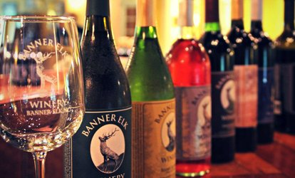 image for Regular or Reserve <strong>Wine Tasting</strong> with Take-Home Glasses for Two at Banner Elk Winery & Villa (Up to 53% Off)