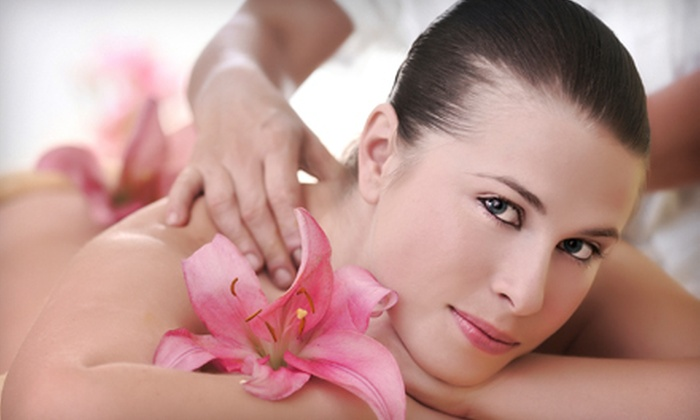 Avi Day Spa  - Great Falls: One-Hour Signature or Couples Massage at Avi Day Spa in Great Falls (Up to 53% Off)