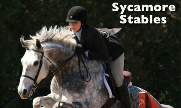Sycamore Stables - Amherst: $29 for a One-Hour Private Riding Lesson at Sycamore Stables ($60 Value)