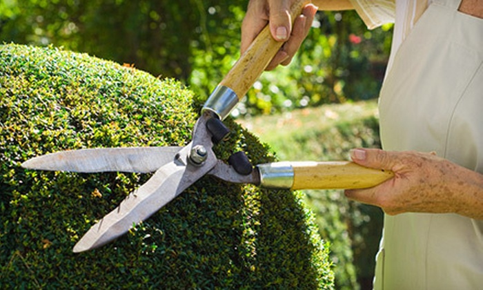 Ozark Outdoor Services - Springfield MO: $99 for a Spring Landscaping Cleanup Package from Ozark Outdoor Services ($375 Value)
