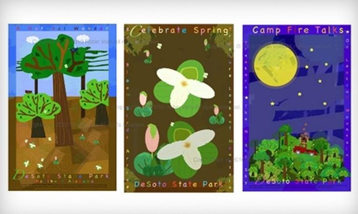 Color Cool Studios: $40 for $80 Toward Original Prints at Color Cool Studios