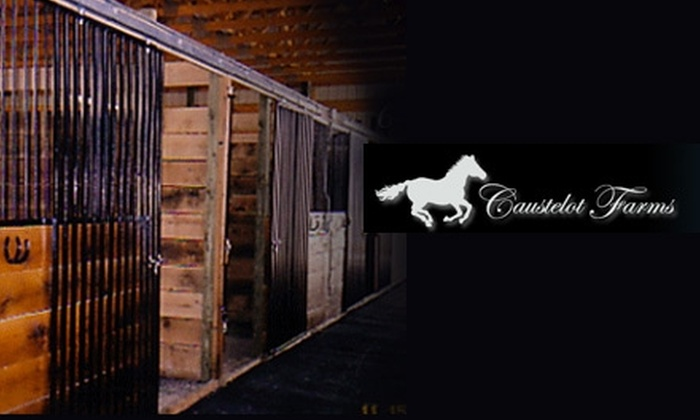 Caustelot Farms - Cecil: $15 for a One-Hour Small-Group Horseback-Riding Lesson or Half-Hour Private Riding Lesson at Caustelot Farms ($35 Value)