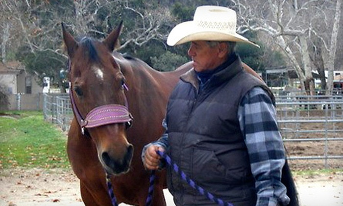 Billy Camarillo Cutting Horses - San Fernando Valley: $25 for One Western Horseback-Riding Lesson at Billy Camarillo Cutting Horses in Lake View Terrace (Up to $60 Value)