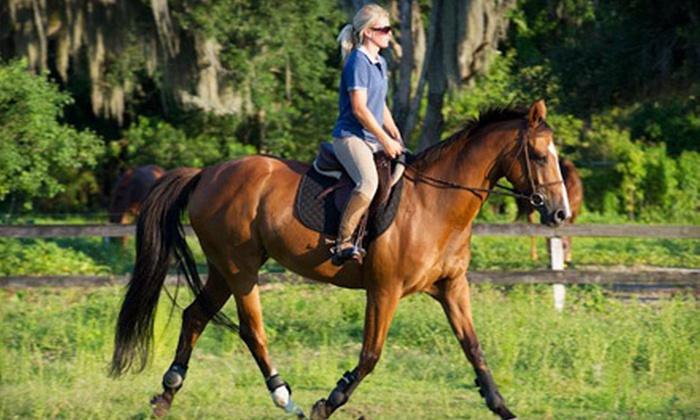 University Equestrian Center - Union Park: 30-Minute Private Riding Lesson ($40 Value)
