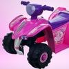 Lil' Rider Mini 4-Wheeler