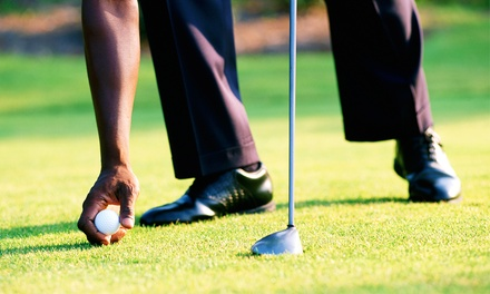 One or Two Private Golf Lessons with Swing Analysis and Video (Up to 56% Off)