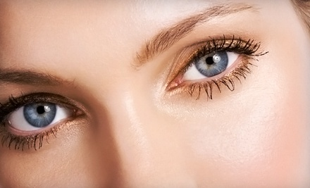 Eyelash Extensions (a $199 value) - Premier Cosmetic Solutions in Tampa