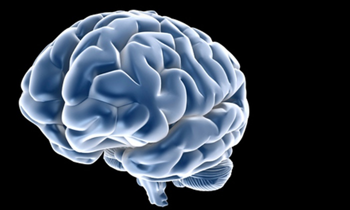 The Healing Brain - Newlands: $35 for a Full Brain-Wave Scan and Optimization at The Healing Brain in Boulder ($100 Value)
