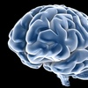 65% Off Brain-Wave Scan in Boulder