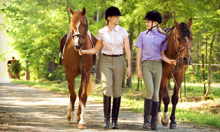Sonora Creek - Lathemtown: One, Three, or Five 60-Minute Horseback-Riding Lessons at Sonora Creek (Up to 61% Off)