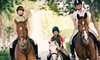RNR STABLES - Lewisville-Flower Mound: One, Three, or Five One-Hour Horseback-Riding Sessions at RNR Stables in Corinth (Up to 70% Off)