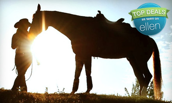 Dream Horse Academy Training and Lessons - Wylie: One, Two, or Four Horseback-Riding Lessons at Dream Horse Academy Training and Lessons in Wylie (Up to 60% Off)