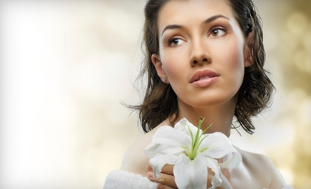 Back Facial (a $70 value) - Simple Bliss Day Spa in Saratoga Springs