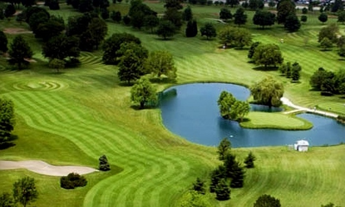 Joliet Park District - Multiple Locations: $81 for Three Rounds of Golf and Cart Rental at Joliet Park District Courses (Up to $159 Value). One Round at Each of Three Locations.
