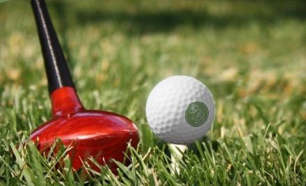 Bill Breen Golf Instruction: 2 Private One-Hour Junior Golf Lessons - Bill Breen Golf Instruction in Nashville