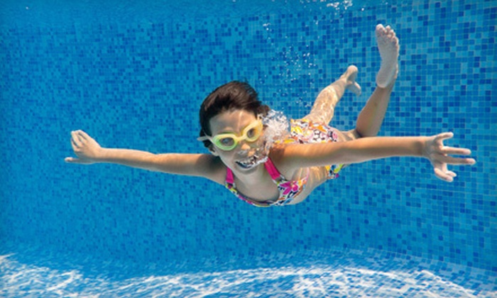 The Dive Shop of Memphis - White Station -Yates Neighborhood Association: $39 for Four 30-Minute Group Swimming Lessons with Registration at The Dive Shop of Memphis ($104 Value)
