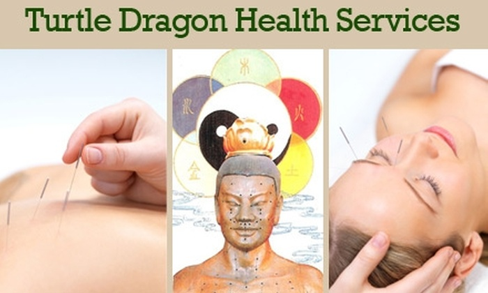 Turtle Dragon Health Services - West University: $35 for a 90-Minute Acupuncture Assessment and Treatment at Turtle Dragon Health Services ($80 Value)