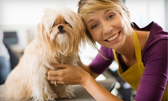 Gentle Pet Grooming - Katy Freeway Industrial Park: Dog-Grooming Services at Gentle Pet Grooming. Three Options Available.