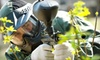 OOB Virtual Assault Paintball Games - Chief Garry Park: $33 for Paintball for Two at Virtual Assault Paintball Games ($65.98 Value)