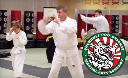 Chenault Pro-Defense Martial Arts Academy - Chenault Pro-Defense Martial Arts Academy in Decatur