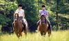 Shelby Trails Equine Center - Simpsonville: $25 for a Guided Trail Ride for Two from Equine Education Shelby Trails Park in Simpsonville ($50 Value)