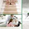 65% Off Carpet and Tile Cleaning