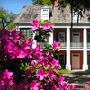 Shadows-on-the-Teche – $10 for Walking Tour for 2