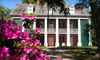 Shadows-on-the-Teche Historic House Museum  - New Iberia: $10 for a Guided Tour for Two of Shadows-on-the-Teche Historic House Museum in New Iberia (Up to $20 Value)