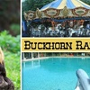Buckhorn Ranch (closed) - Lincoln Park Farms: $10 for One General Admission and 10 Tokens at Buckhorn Ranch ($23 Value)